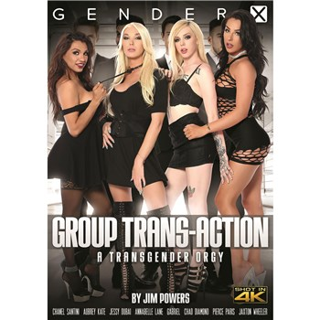 Four TS females wearing sexy clothing group trans action