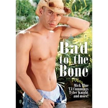 bad-to-the-bone